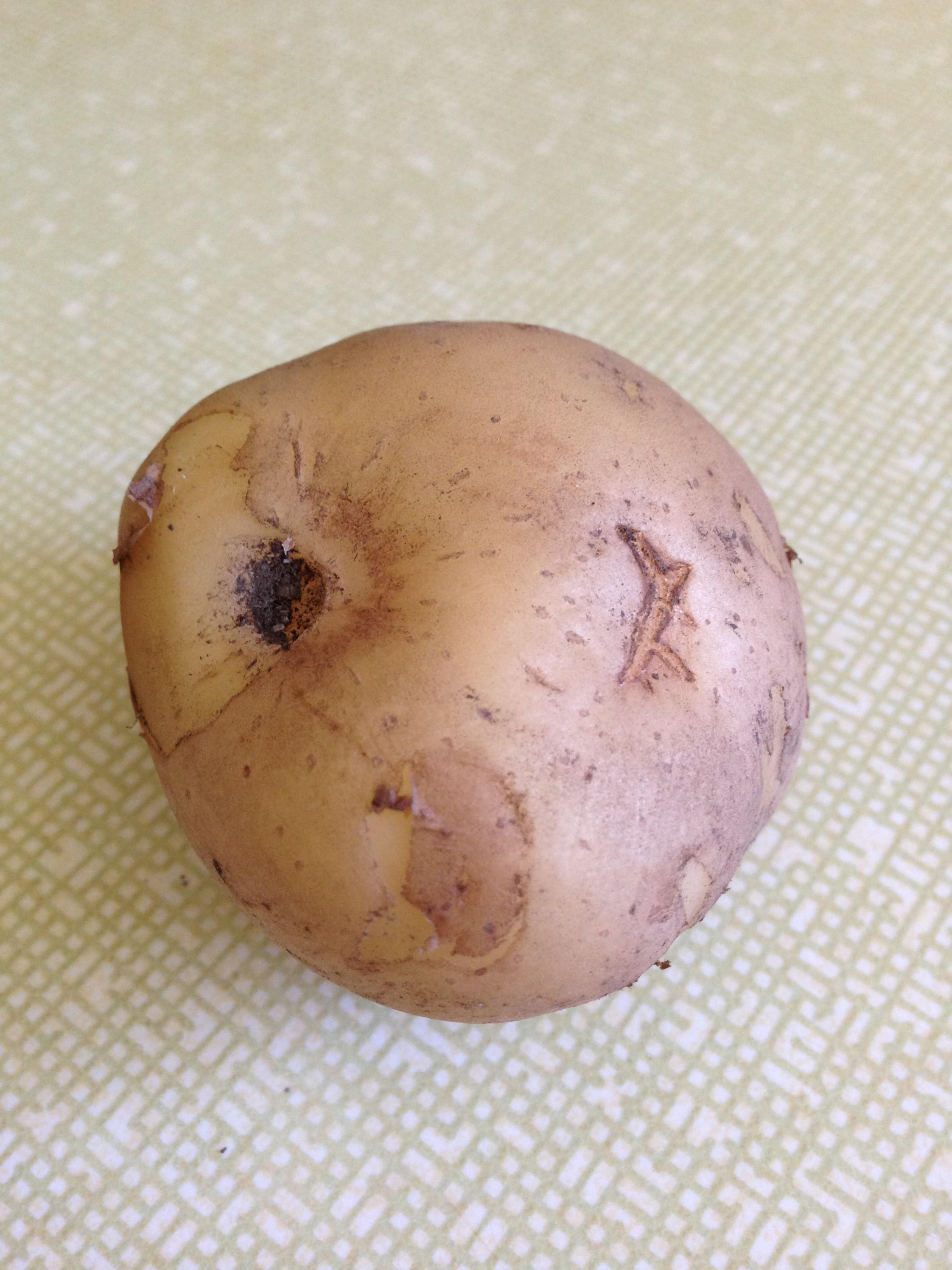 One potato…