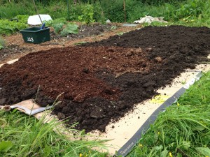 no dig vegetable bed