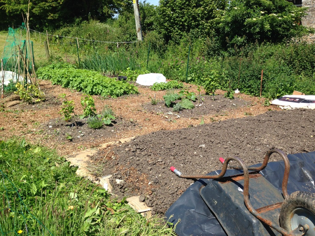 allotment 16/6/15
